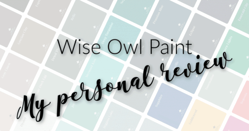 Wise Owl Paint Review