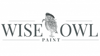 Wise Owl Paints