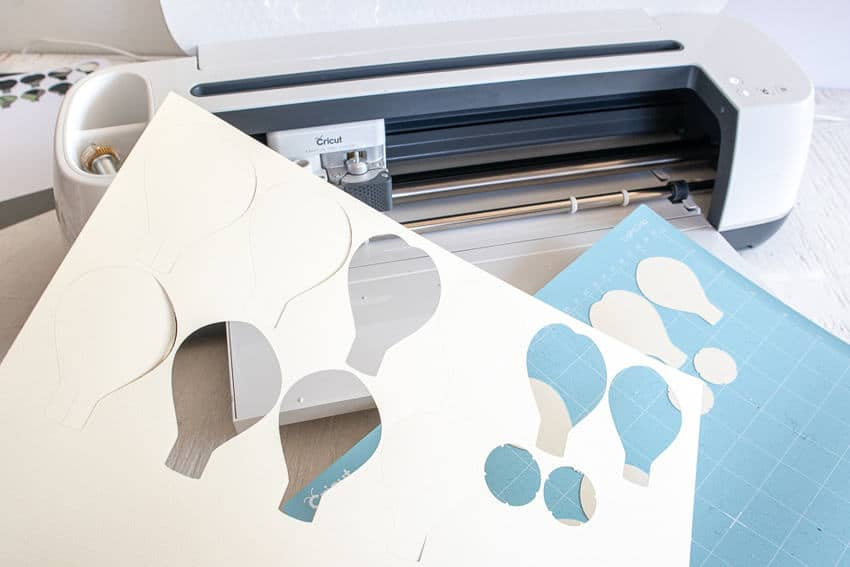 cut Paper Anenome