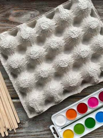 21 Egg Carton Crafts Perfect For Recycling Your Egg Cartons